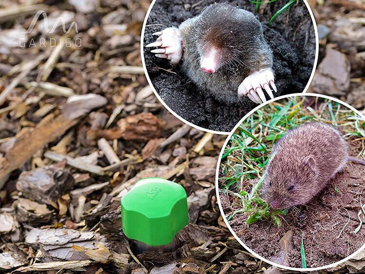 Gardigo Repulsif Taupe Ultrason à Vibrations Rat Taupier Campagnols