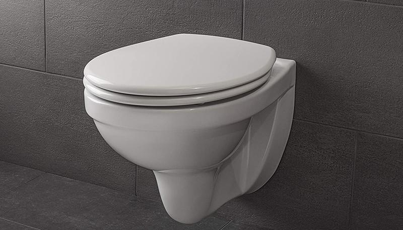 Les critères de sélection pour bien choisir votre siège toilette