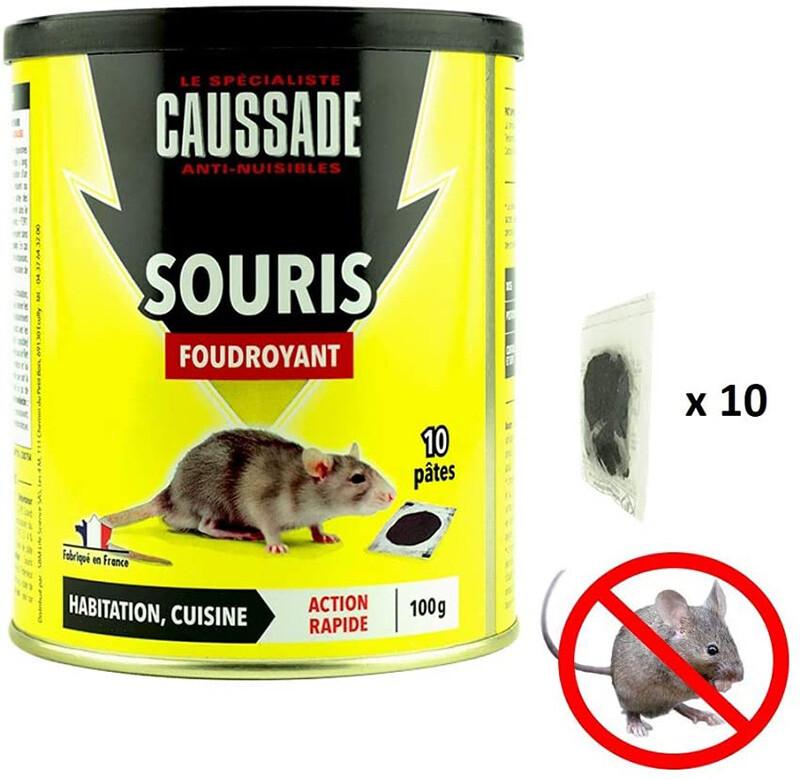 Test CAUSSADE Casapt10 Souris Pat'Appât Foudroyant 10 Pâtes Très Appètent pour Petit Animal