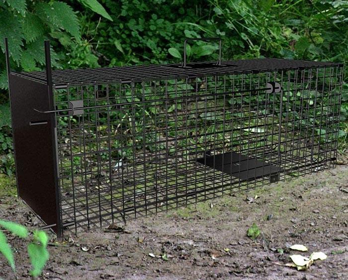 test piege renard Amagabeli Piège vivant 78x26x29cm Piège animaliergrand piège Piège à renard